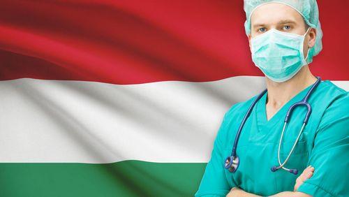 Medizinstudium an der semmelweis universit t budapest for Medizin studieren schweiz